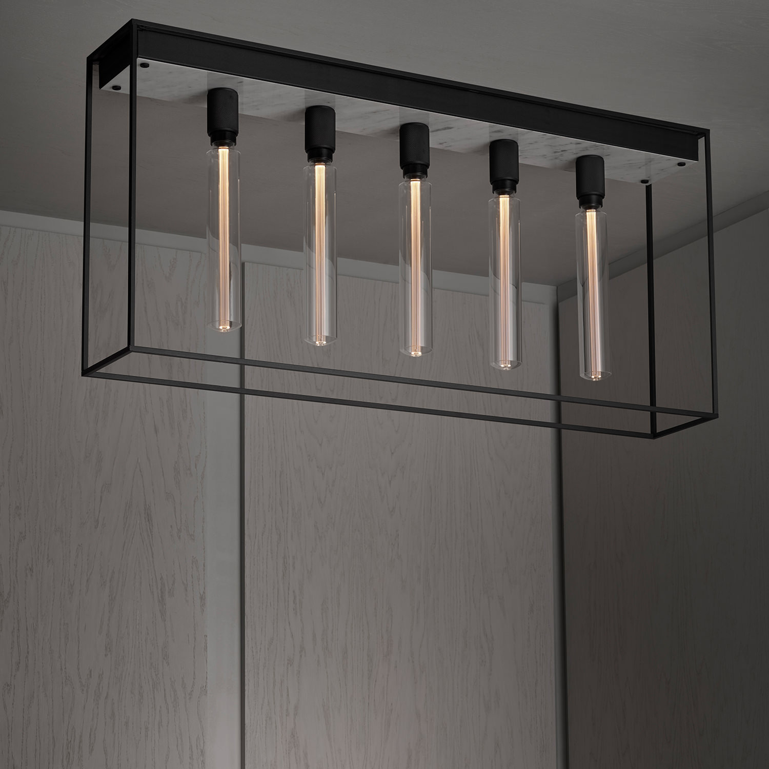 Caged 5.0. Ceiling Lamp