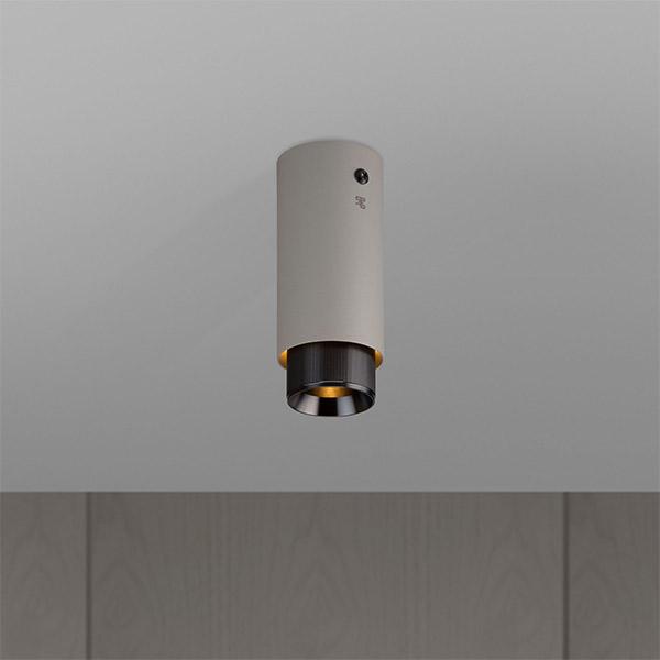Exhaust Surface Ceiling Lamp - Stone & Gun Metal